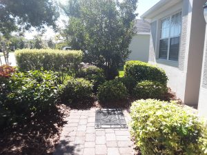 martha's house assisted living facility viera florida